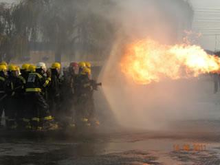 Flame bending at Puregas